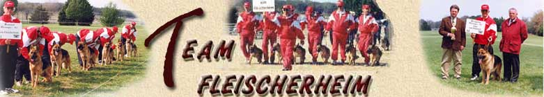 Team Fleischerhiem Logo -  Fleischerheim Blogs and Articles